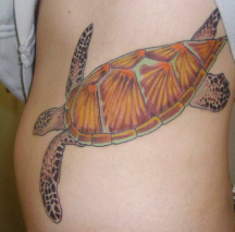 Giant turtle tattoo photo.PNG